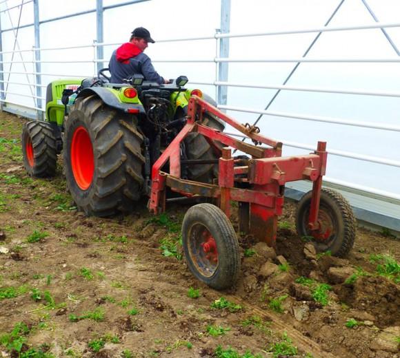 tuinbouwloonwerk.be